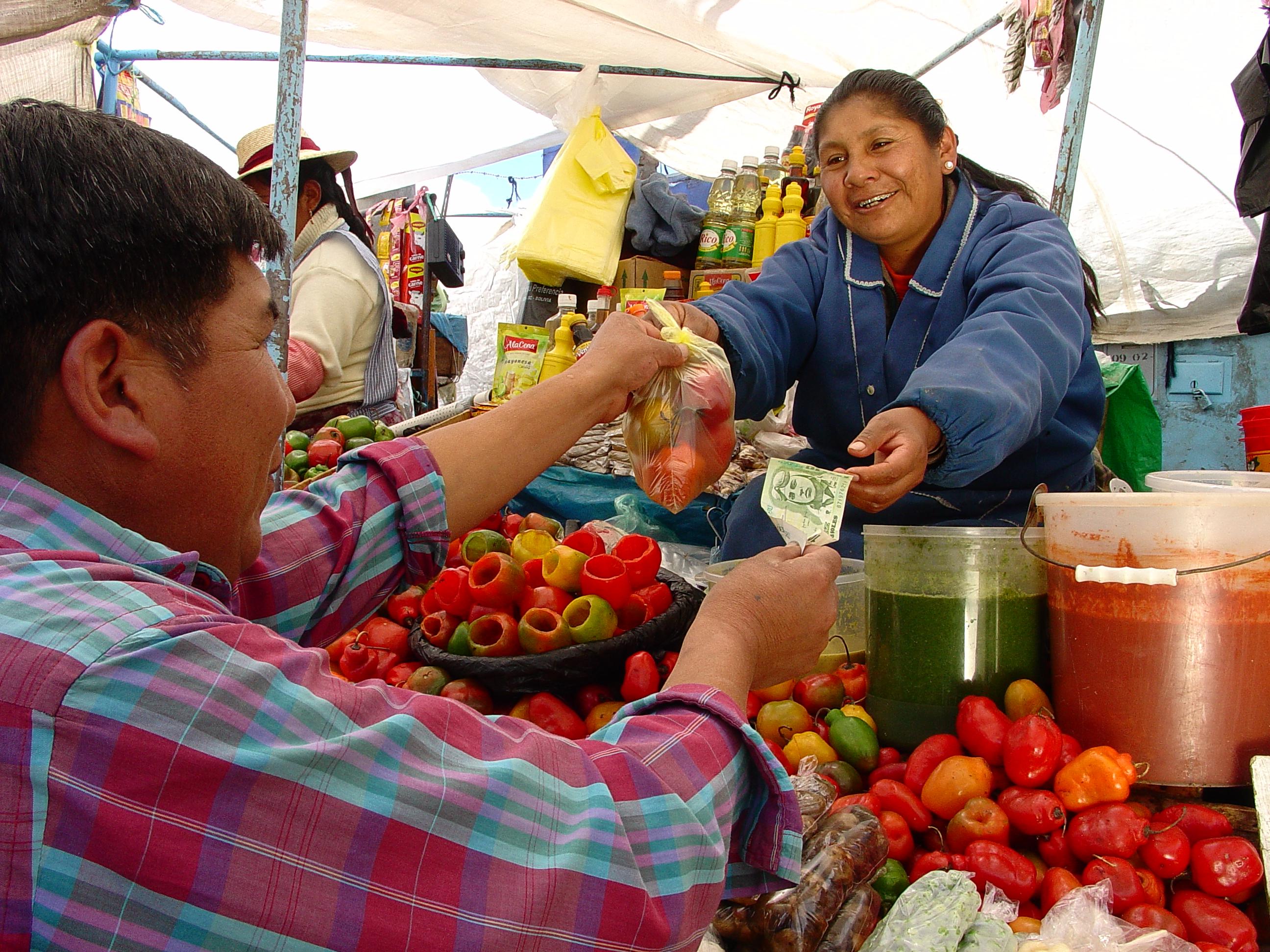 Microfinanzas - Fuente:Blog Promujer